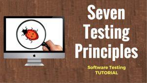 ソフトウェア-テスト-7原則